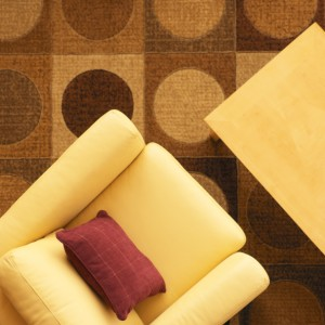 Professional upholstery cleaning in Agoura Hills CA.